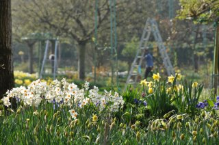 march-giverny