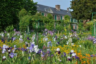 giverny-iris-time