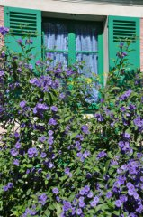 giverny-kitchen-window