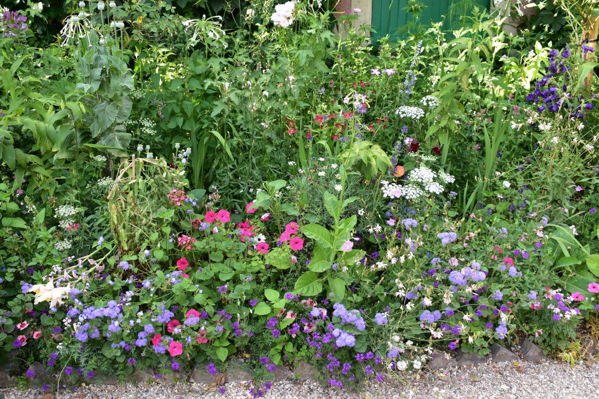 flower-bed-giverny