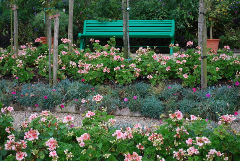 Giverny monet 39 s flower garden for Jardin giverny
