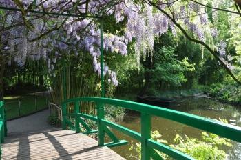 wisteria-boats-giverny
