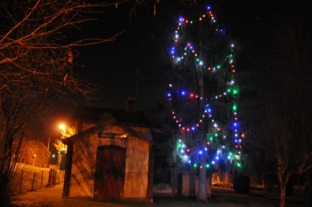 christmas-tree-giverny