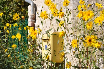 letterbox-giverny