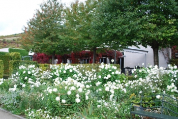 giverny-impressionism-museum-garden.jpg