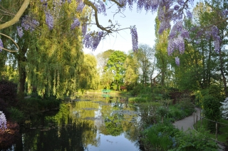 giverny-may