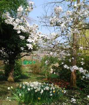 giverny-april