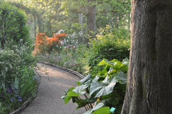 path-at-giverny