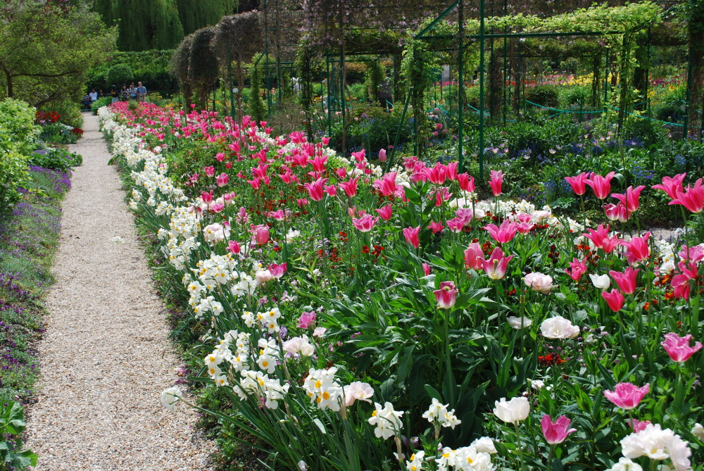 """monets garden at giverny essay Some of his most famous paintings were of his garden in giverny, famous for its rectangular clos normand one thought on """" monet's gardens at giverny."""