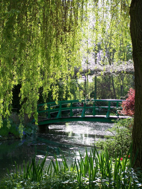 Giverny | April in Monet's garden