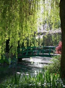 april-footbridge.jpg