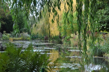 giverny-waterscape.jpg