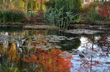 autumn-giverny