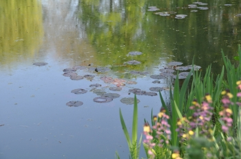 giverny-monet-pond