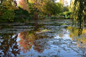 giverny-pond-october
