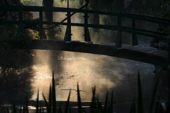 giverny-sunrise