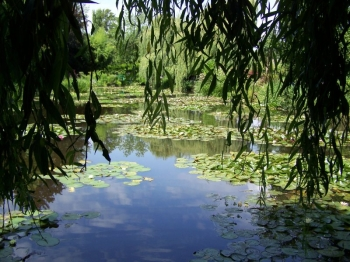 monet-giverny.jpg