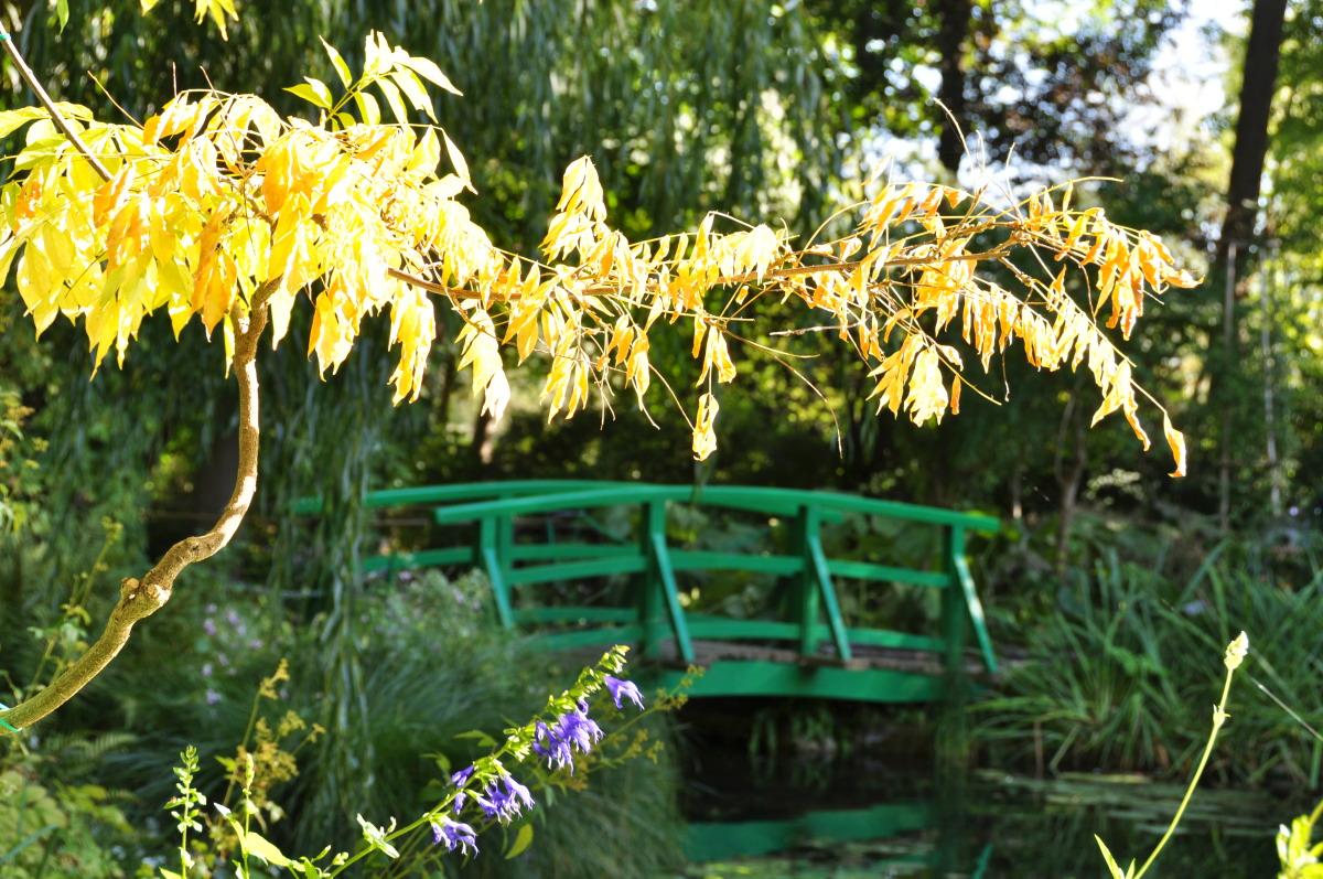 wisteria-monet.jpg