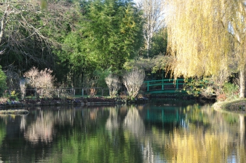giverny-december