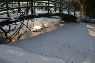 snowy-giverny
