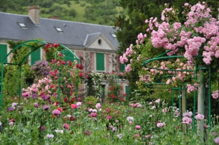 giverny-roses